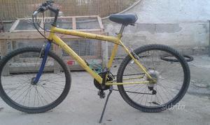 3 bici Mountain bike