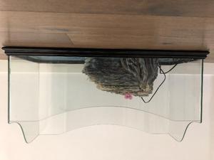 Filtro e termostato per tartarughe posot class for Depuratore acqua tartarughe