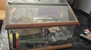 Tartarughiera in legno posot class for Depuratore acqua tartarughe