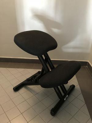 Sedia ergonomica varier con schienale posot class - Sedia ergonomica cinius ...