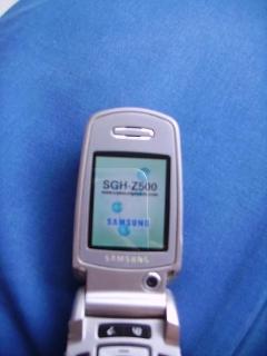 Cellulare Samsung SGH Z 500