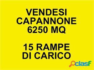 CAPANNONE 6250mq con 15 Rampe di carico