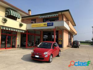 FIAT 500 benzina in vendita a Campolongo Maggiore (Venezia)