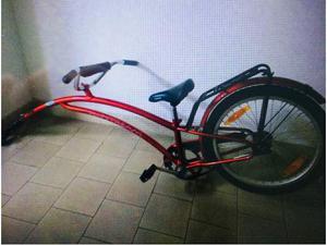Rimorchio bici per bambino