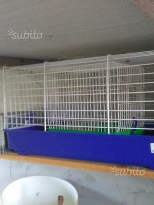Gabbia per coniglio e gabbia per uccelli