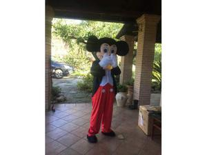 Vendo/noleggio mascotte topolino e varie