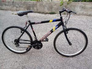 Bici mtb run & bike (15)