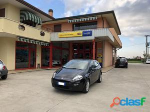 FIAT Punto benzina in vendita a Campolongo Maggiore