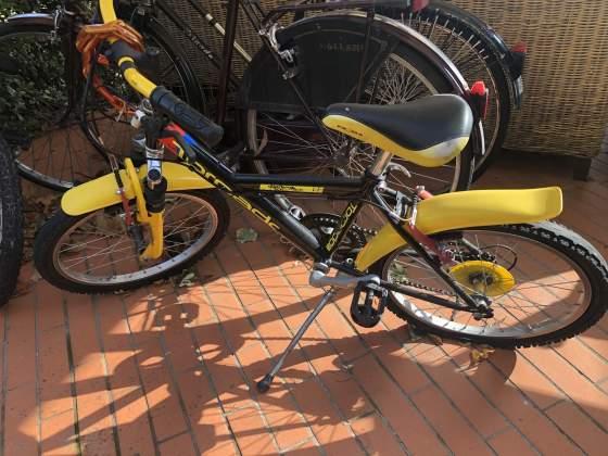 Bicicletta bimbo ruote 20
