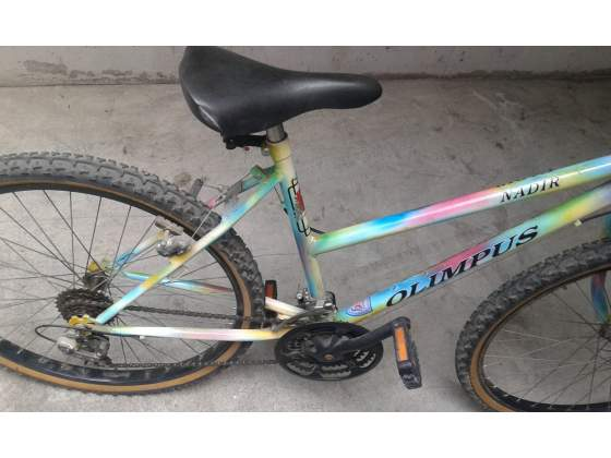 Montain Bike da donna