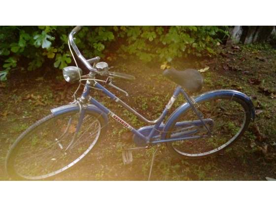 Bicicletta Zecchini Posot Class