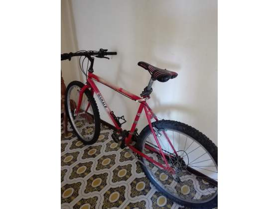 Bici Mountain bike 26 pollici