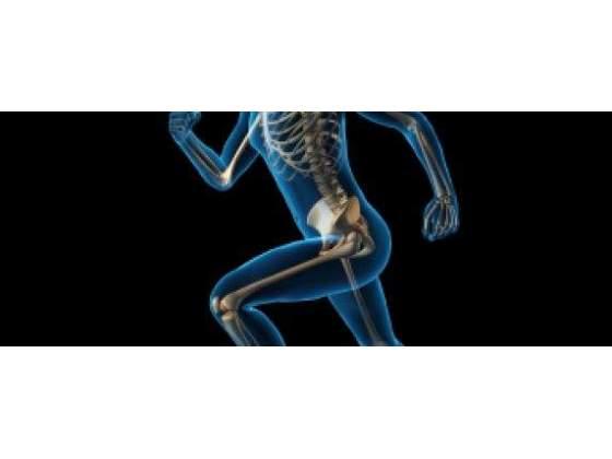Lezioni di Biochimica alimentare, Personal Training, Postura
