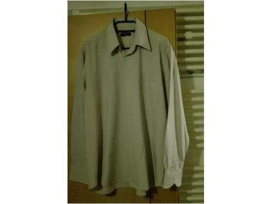 Taglia , camicia da uomo colore beige chiaro