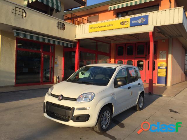 FIAT Panda benzina in vendita a Campolongo Maggiore