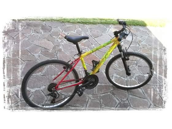 Bici mountain bike bimbo/ragazzo