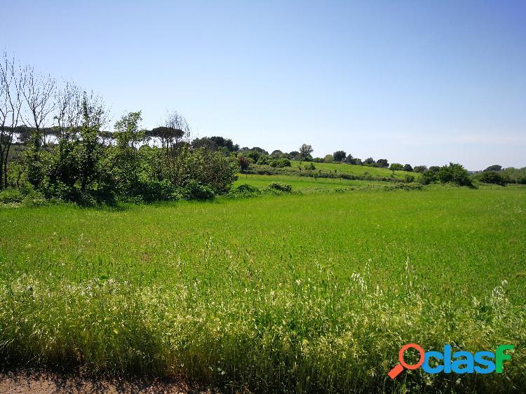 Appia Antica - Terreno agricolo € 280.000