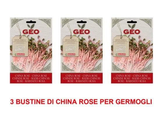 3 confezioni di semi bio di china rose per germogli 20gr