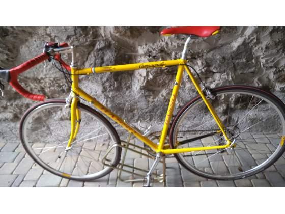 Bici Basso Coral Campagnolo Mirage