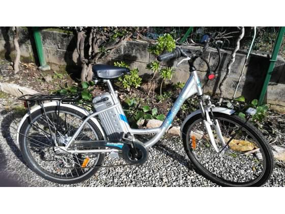 Bici Ecology Bike elettrica con pedalata assistita