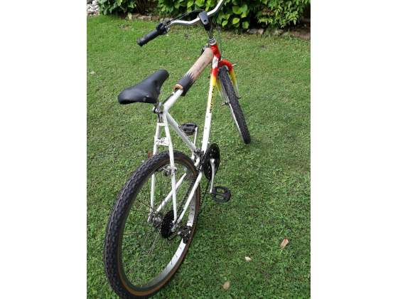 Bicicletta Mountain bike MTB ruota da 26
