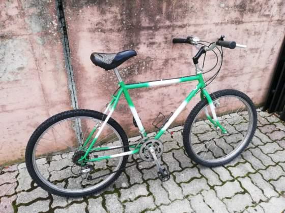 Mountain bike misura 26