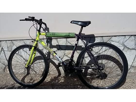 Bici bicicletta mountain bike ADULTO
