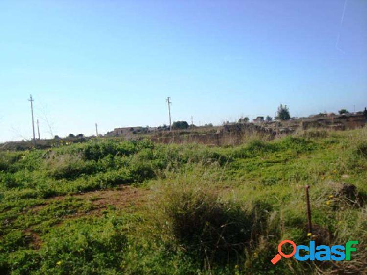 10 ettari di terreno con cave di tufo