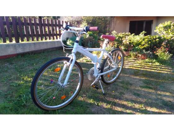 Bicicletta Pieghevole Pininfarina 26.Bicicletta Pieghevole Pininfarina 26