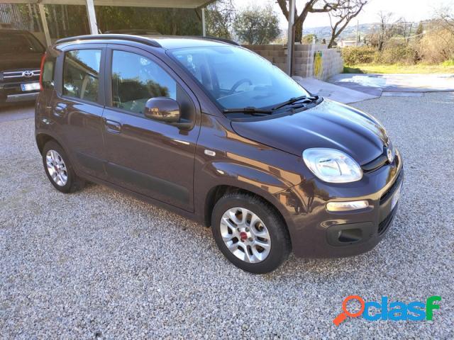 FIAT Panda diesel in vendita a Roma (Roma)