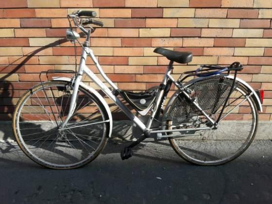 Bicicletta da donna e mountain bike