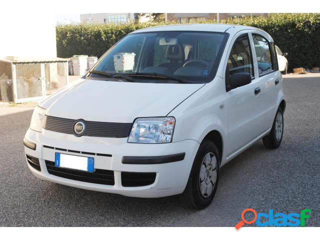 FIAT Panda benzina in vendita a Viterbo (Viterbo)