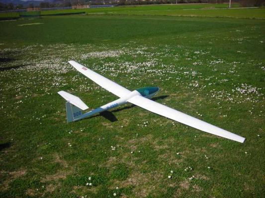 Vendo DG 300 MULTIPLEX 4 m. di apertura alare in perfetto