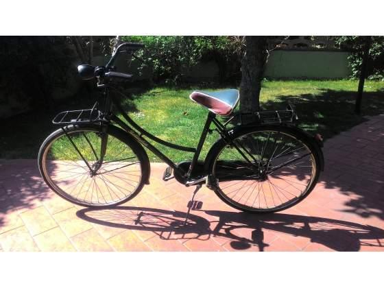 Bicicletta Bottecchia uomo donna cerchio 26
