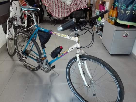 Mountain bike specialized Rockhopper lucchini