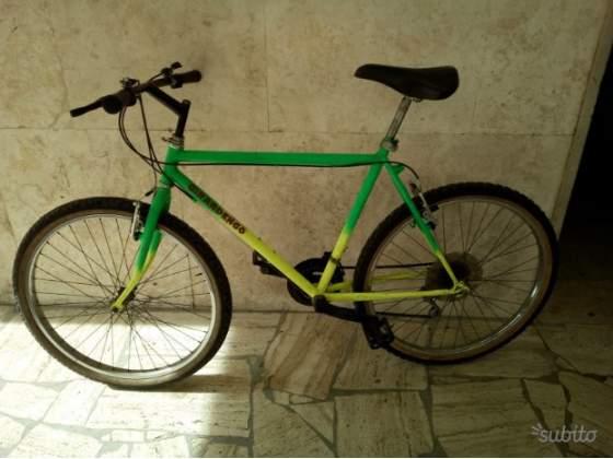 Mountain bike Girardengo 21 rapporti