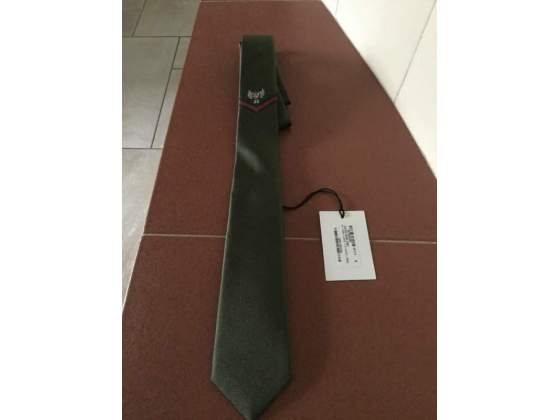 Cravatta Gucci