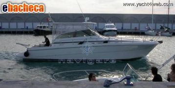 Cayman 40 w.a. hard top