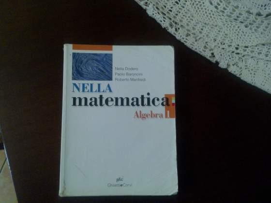 Nella matematica. Algebra. Codice ISBN: