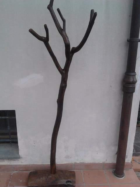 Attaccapanni in legno di ulivo arte povera