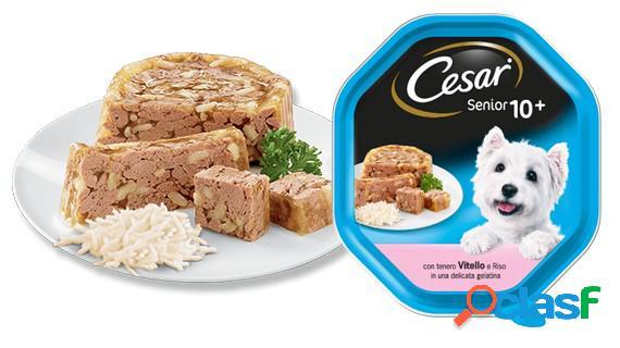 Cesar vaschetta gr. 150 scelta dello chef pesce bianco