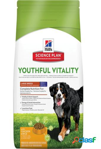 Hill's canine youthful vitality a5+ large pollo 10 kg