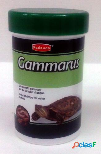 Padovan gamberetti gr 12 - ml 100