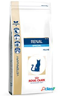 Royal canin diet gatto renal special gr 500