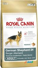 Royal canin pastore tedesco adult kg 12 (german shepherd)