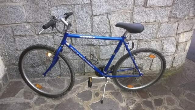 Mountain bike da uomo mai usata