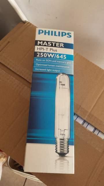 Lampada philips master