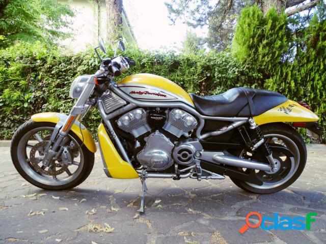 Harley-Davidson V-Rod benzina in vendita a Castel Maggiore