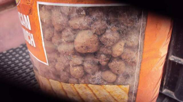 Argilla Espansa in busta da 2 KG. per piante al costo di