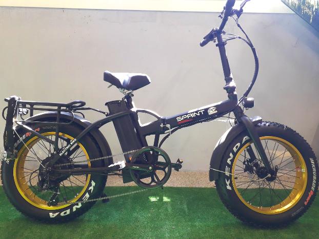 E bike - fat bike